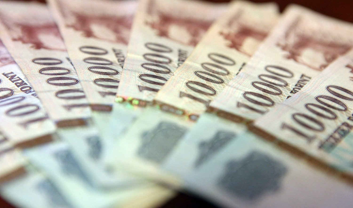 Hungarian National Bank to Use Foreign Currency Reserves