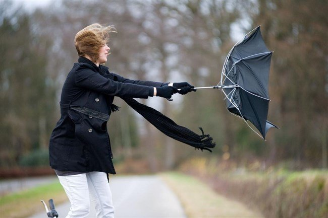 News Flash: Strong Winds Expected In Western Areas Of Hungary