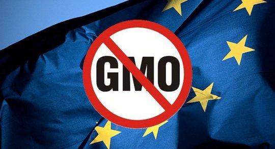 "Rural DevelopmentMinistry: Govt to stick by ""zero tolerance"" on GMO"