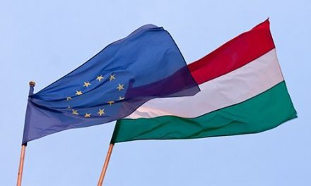 EP committee head: Delegation made routine visit to Hungary