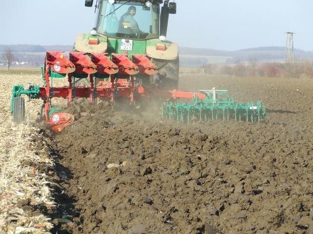 Government starts farmland auctions
