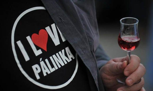 Why drink Pálinka?