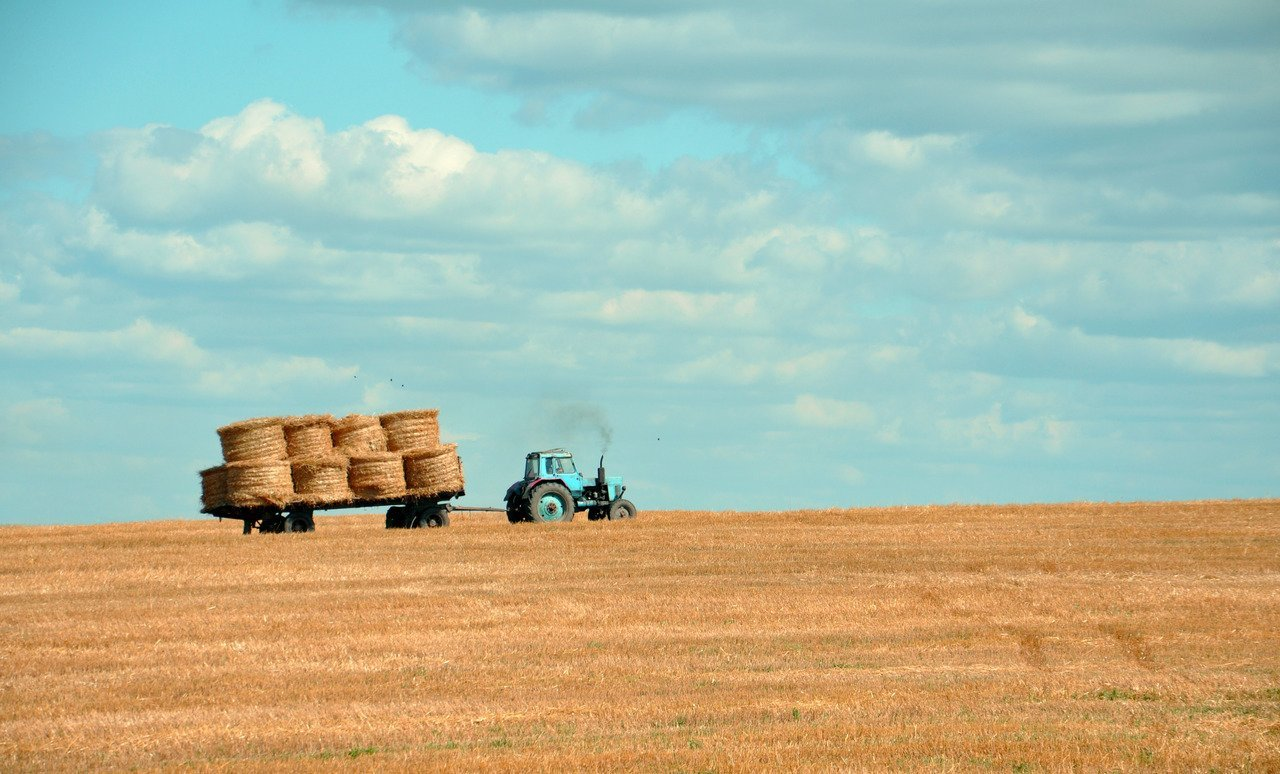 Hungary farm sector output continues to grow in 2014