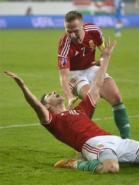 Hungary Defeats Finland in Euro 2016 Qualifier