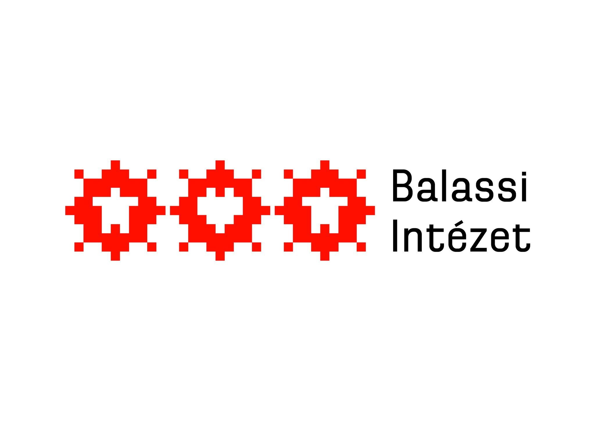 Students from 25 countries attend Balassi Institute summer university