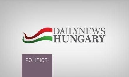 Amnesty International criticises Hungarian government for 2017 human rights record