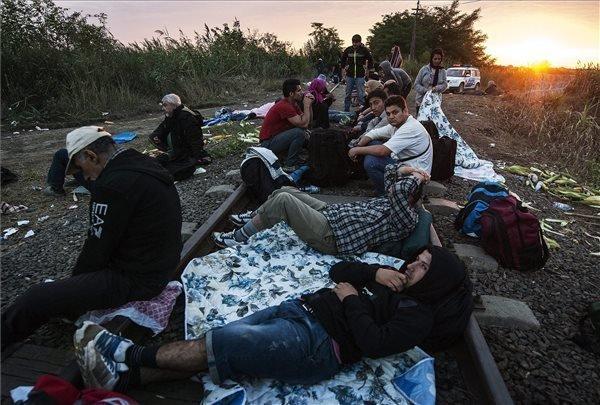 Government to tighten legislation on handling migrants, human smuggling