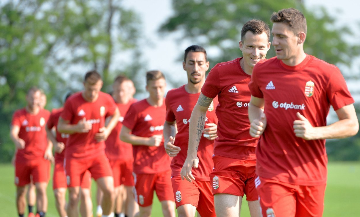Hungary squad confirmed for forthcoming EURO 2016 qualifiers