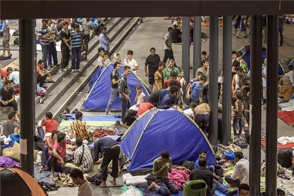 Socialists, DK, LMP demand government help refugees