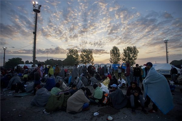 Migrant wave not to ease in winter, says analyst
