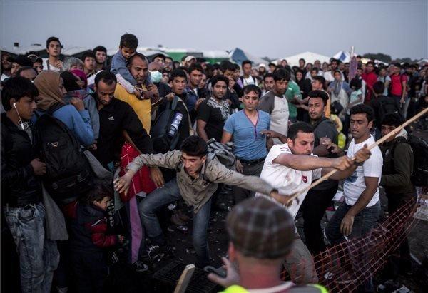 "Government spokesman: Migrant crisis ""threatens freedom"" of EU citizens"