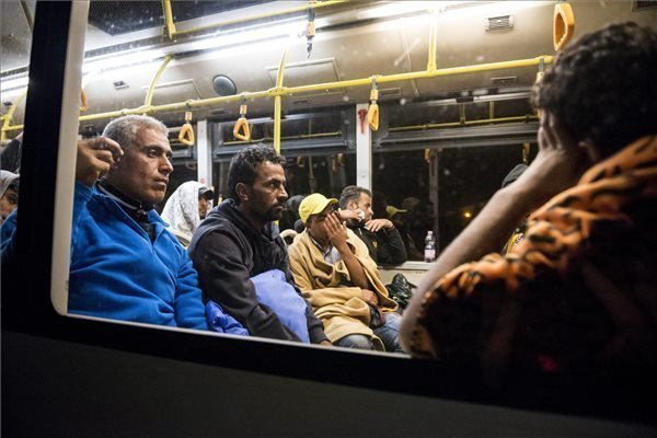 Government offers migrants transportation to Austria border