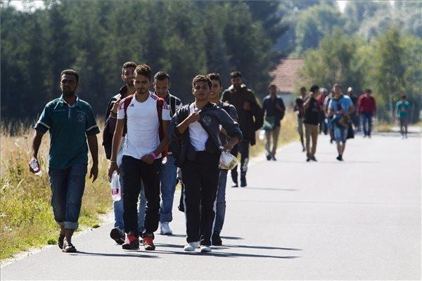 So far 75,000 asylum procedures cancelled in 2015