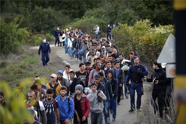 Over 312,000 migrants entered Hungary illegally so far this year