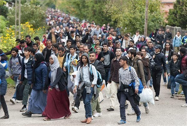 Offrical poll shows increasing fear of migrants in Hungary