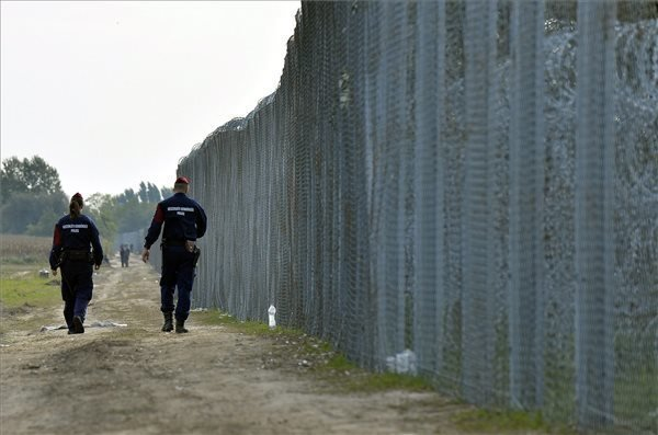 Border security fence may be torn apart in March