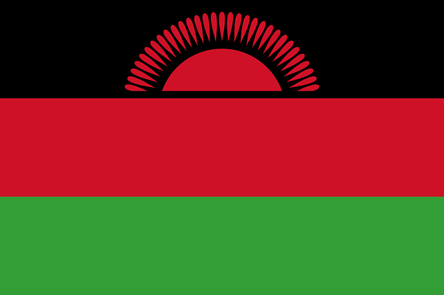 Hungarian doctors have arrived in Malawi