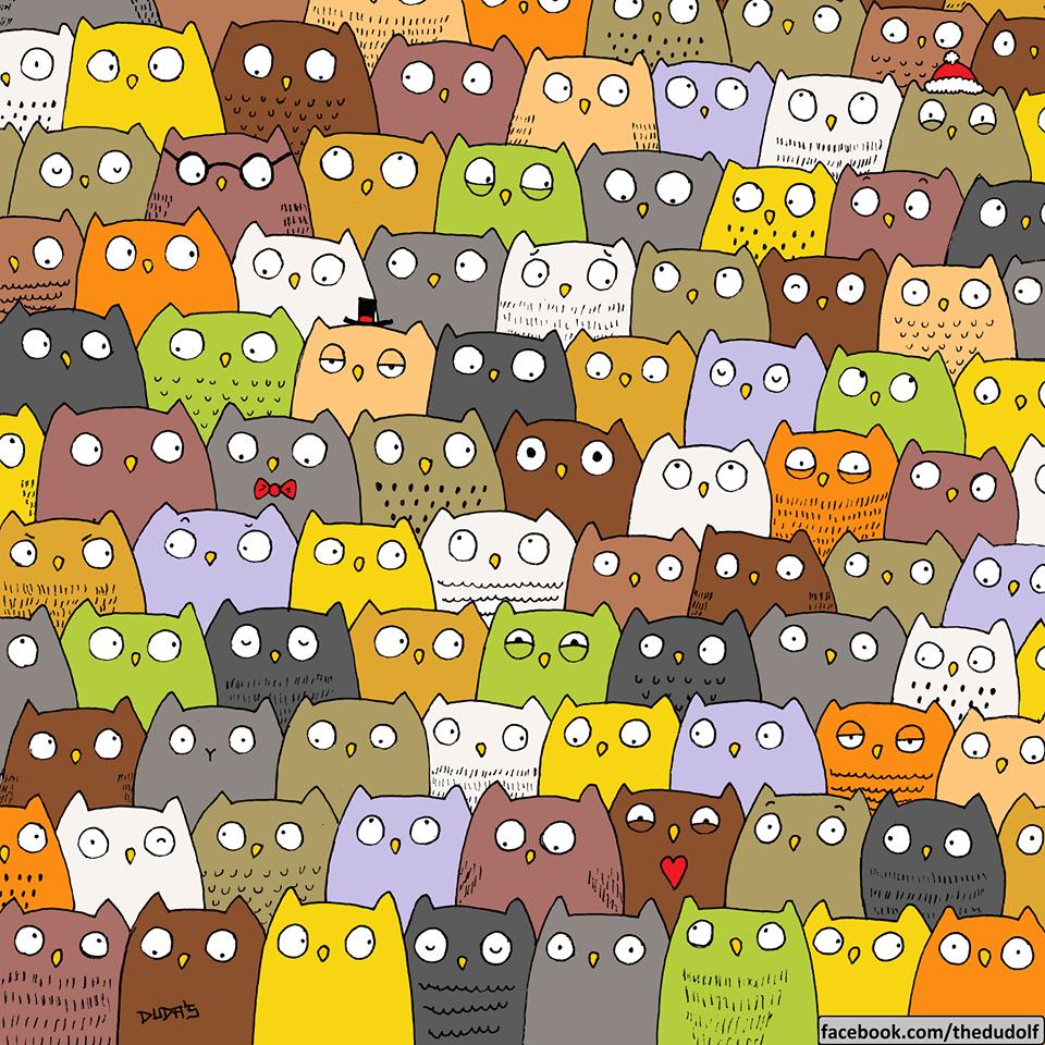 dudolf bagoly owl comics