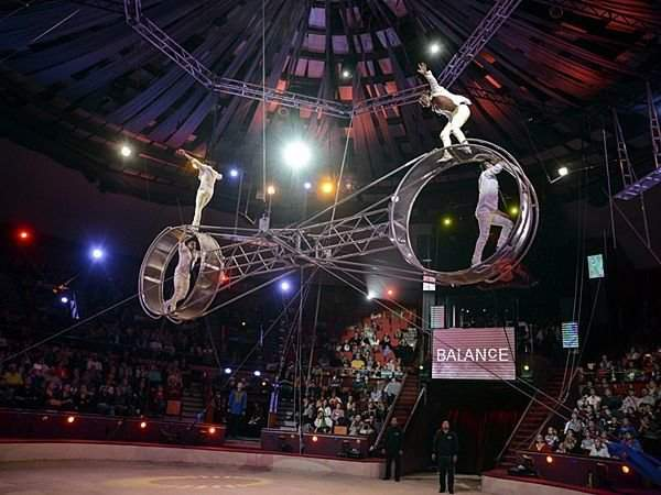 On this week: 11th International Circus Festival in Budapest