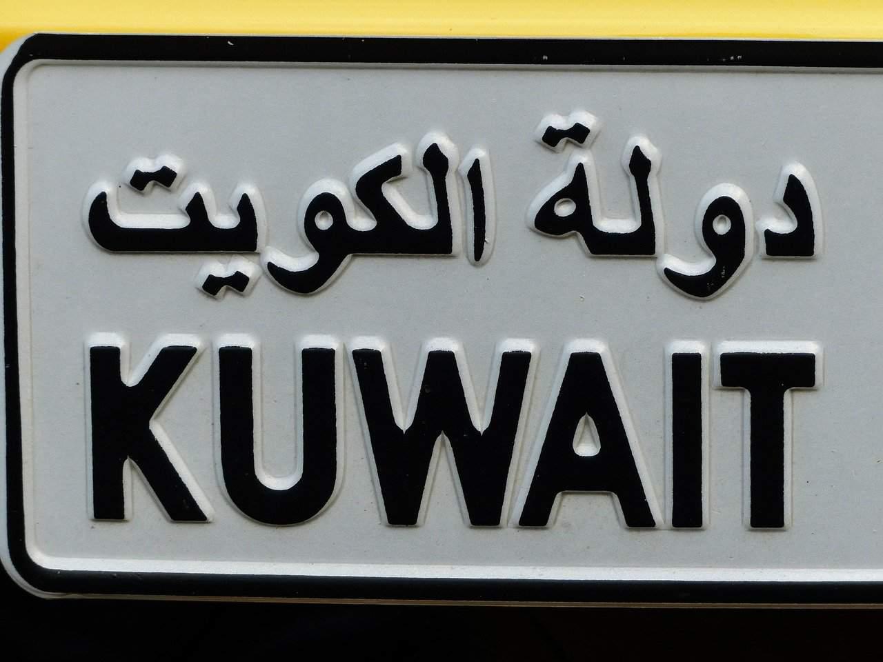 Long-term future of Hungary-Kuwait trade ties bright, says state secretary