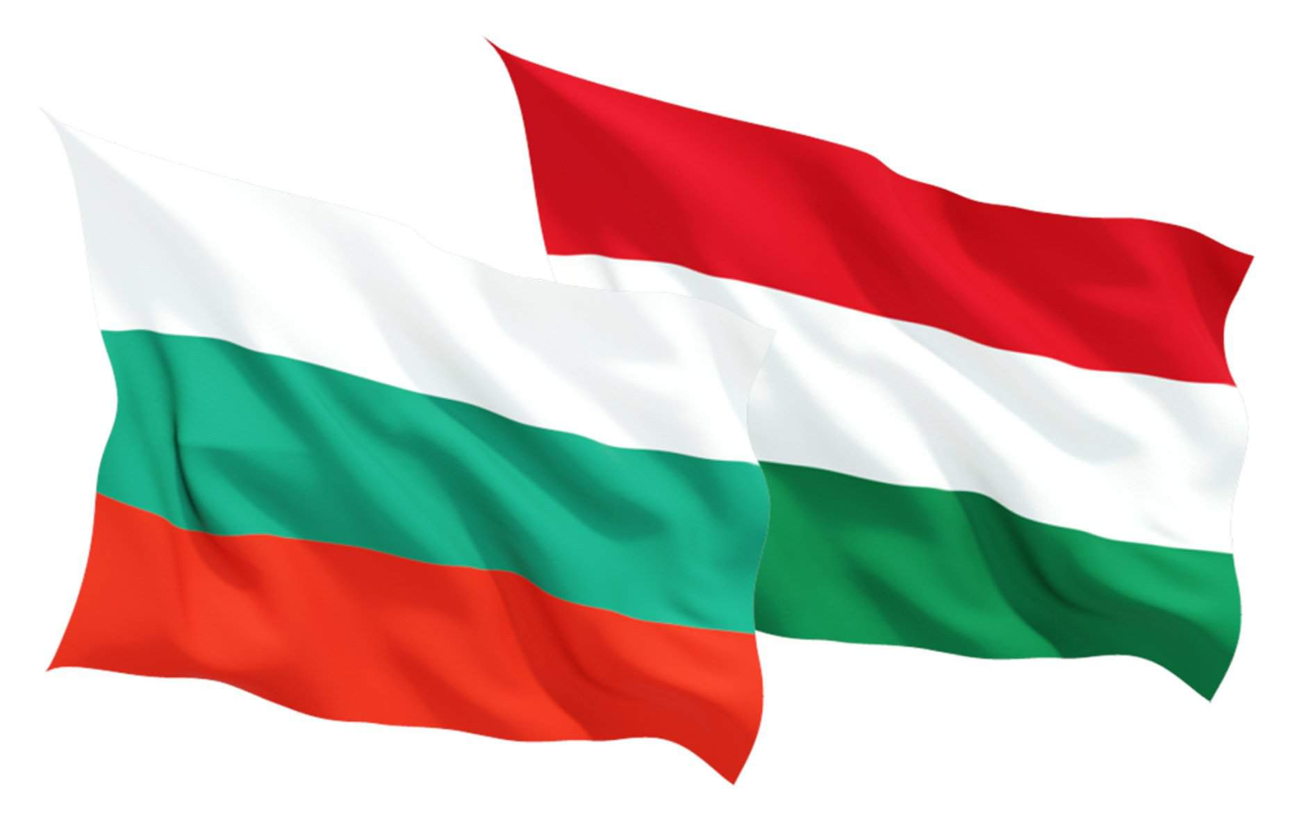 Economy minister discusses Hungary's vocational training system with Bulgarian counterpart