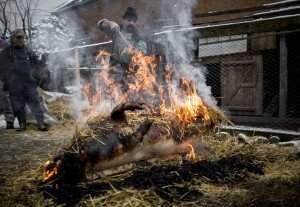 Lövéte, 2016. február 3. Perzselés a disznóvágáson a Hargita megyei Lövétén, Erdélyben 2016. február 1-jén. MTI Fotó: Mohai Balázs