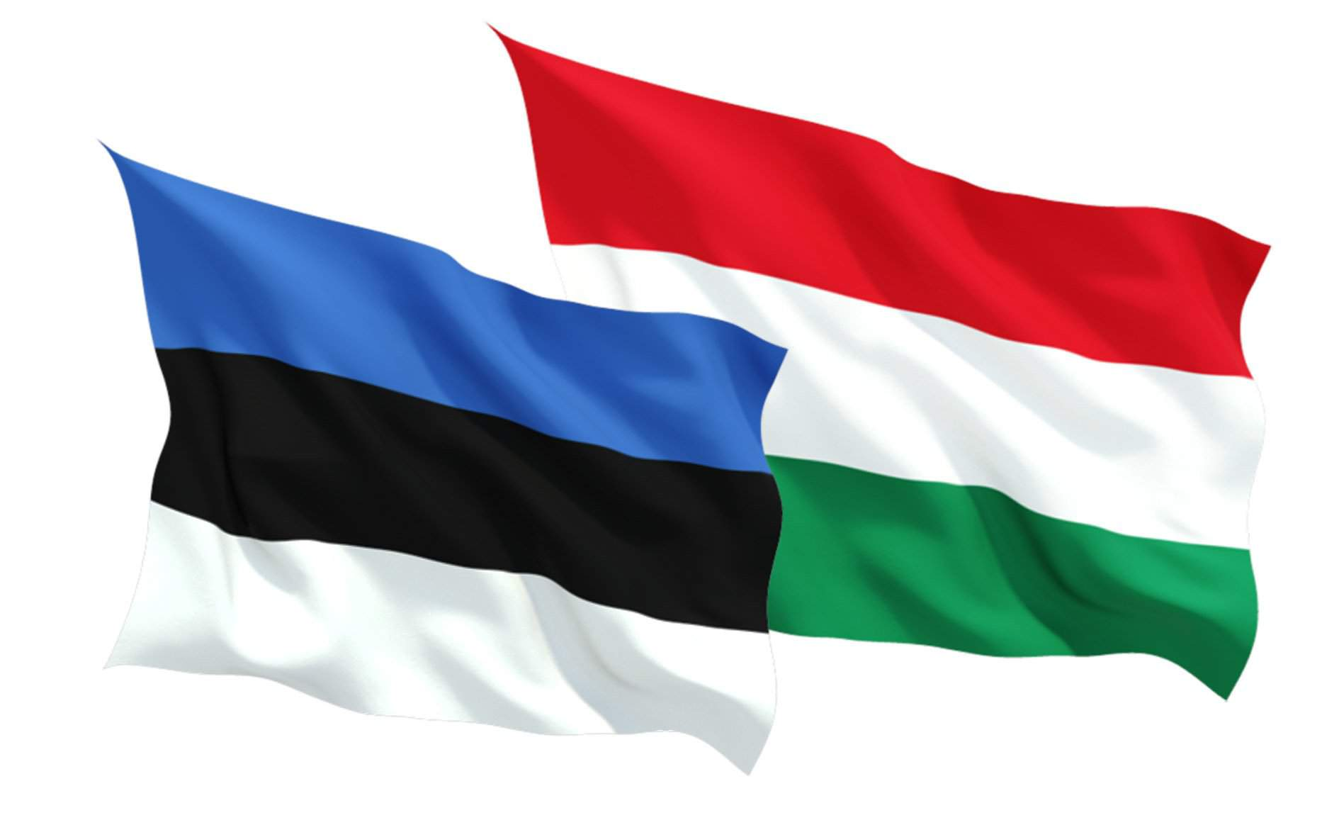 Hungarian house speaker holds talks on Europe's future in Tallinn
