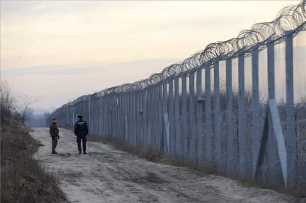 Szeged court passes 80 decisions on illegal border crossing