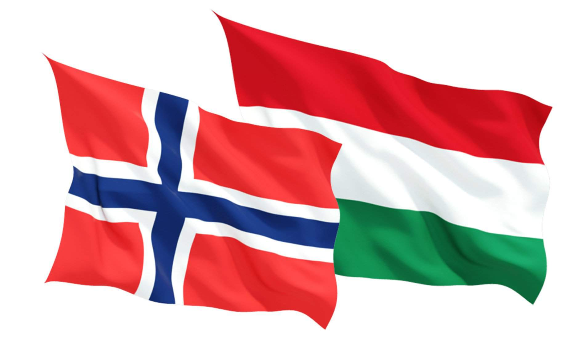 Referendum – Hungarian, Norwegian Liberals campaign for 'yes' vote