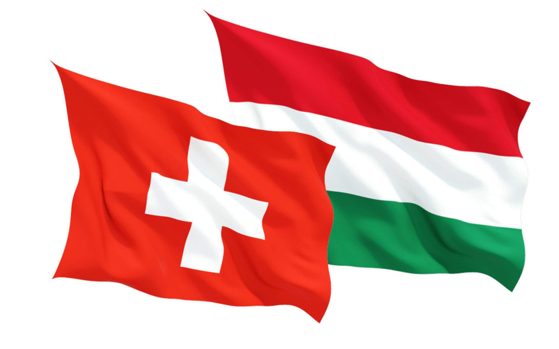 25th anniversary of the founding of Swiss food giant Nestle's Hungarian subsidiary in Hungary