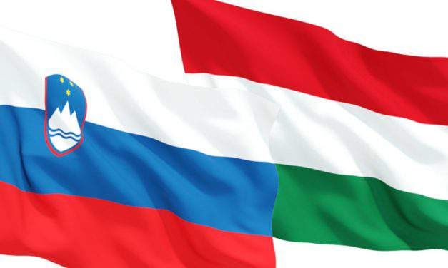 Strong central Europe in Hungary, Slovenia's interest, says state secretary