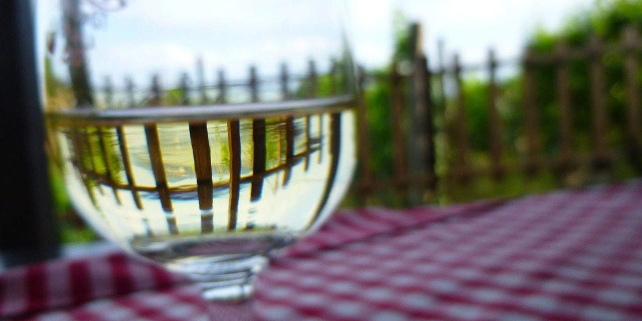 Exclusive wine tours around the bath centres of Hungary