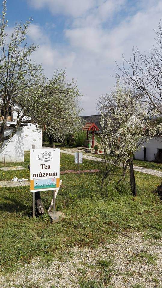 """An unusual English """"living museum"""" in Hungarian countryside"""