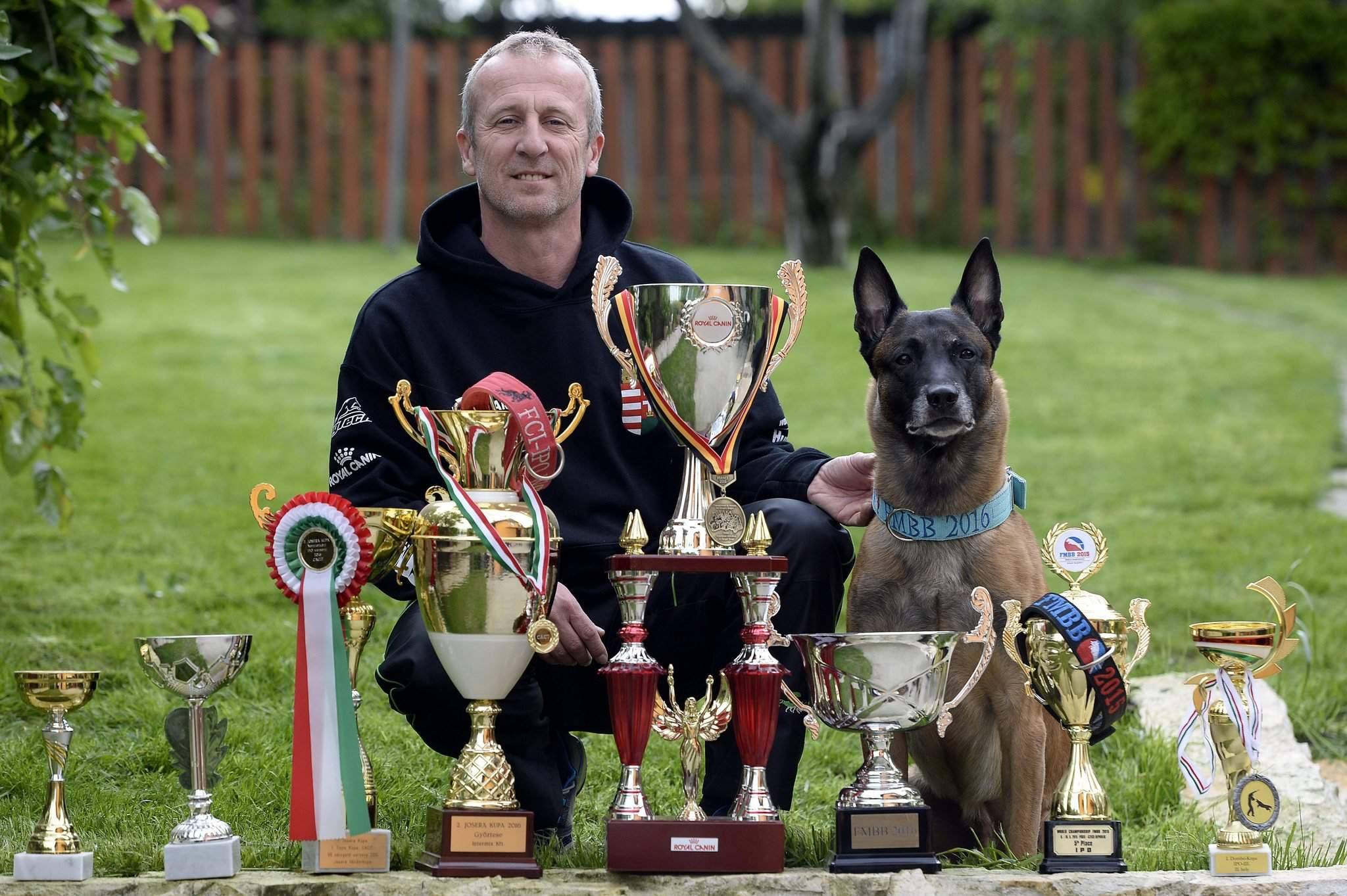 A Hungarian dog won the World Championship for Belgian Shepherds – VIDEO