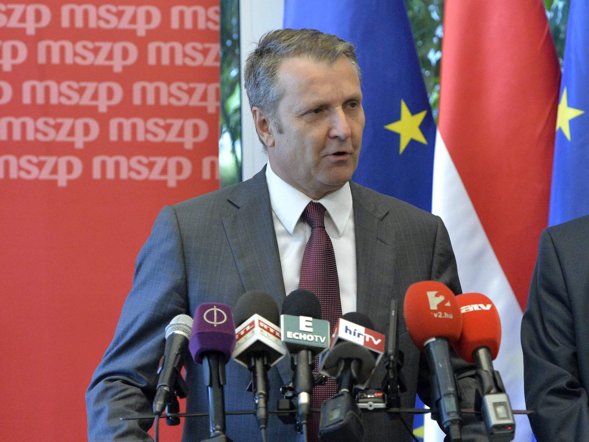 New Socialist leader wants Botka to head party's election campaign preparations