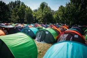 survive festivals tent2