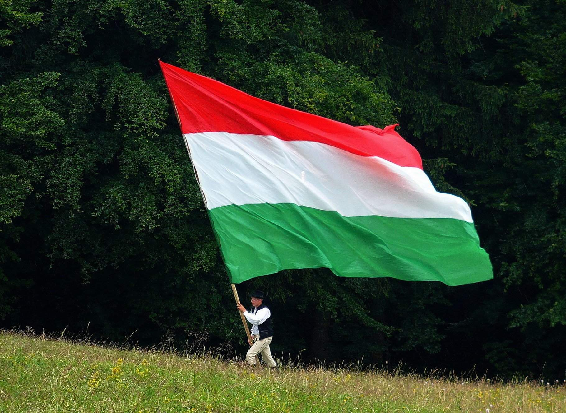 Hungary, 96 years after the Treaty of Trianon