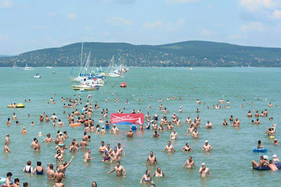 New record set at the Balaton cross swimming competition