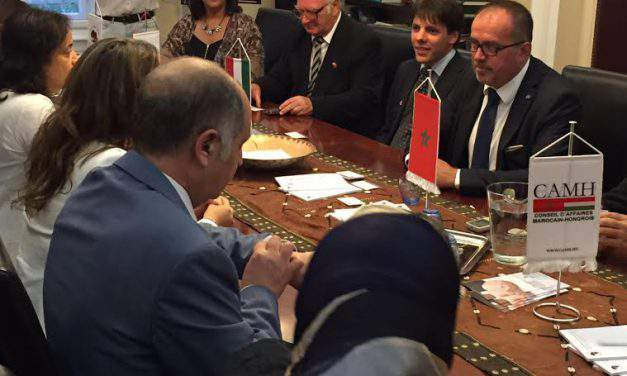 The Moroccan Minister of Water trusts Hungarian help