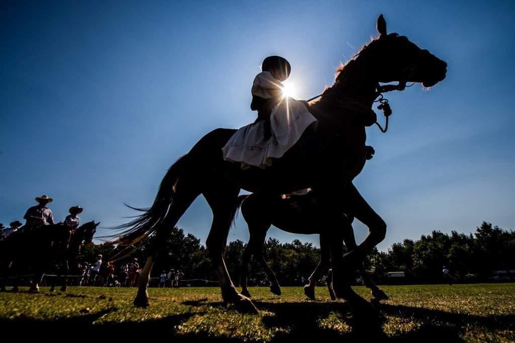 Equestrian festival in Kiskunfélegyháza