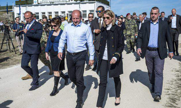 NATO top official visits two ongoing exercises in West Hungary