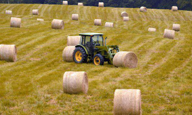 LMP: Hungarian farmland should be exempted from free movement of capital rules