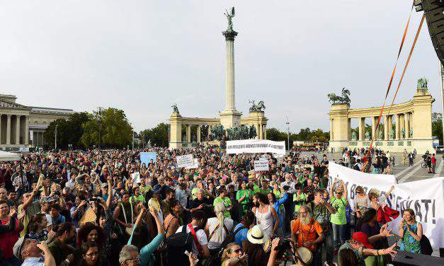 Civil organisations demonstrate to protect Budapest trees