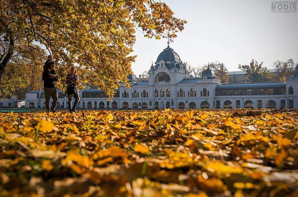 Free programs in Hungary for November