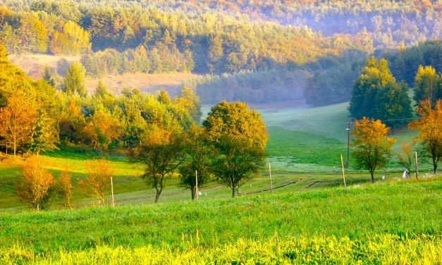 Discover the beautiful sights and landscape of Őrség – Photos