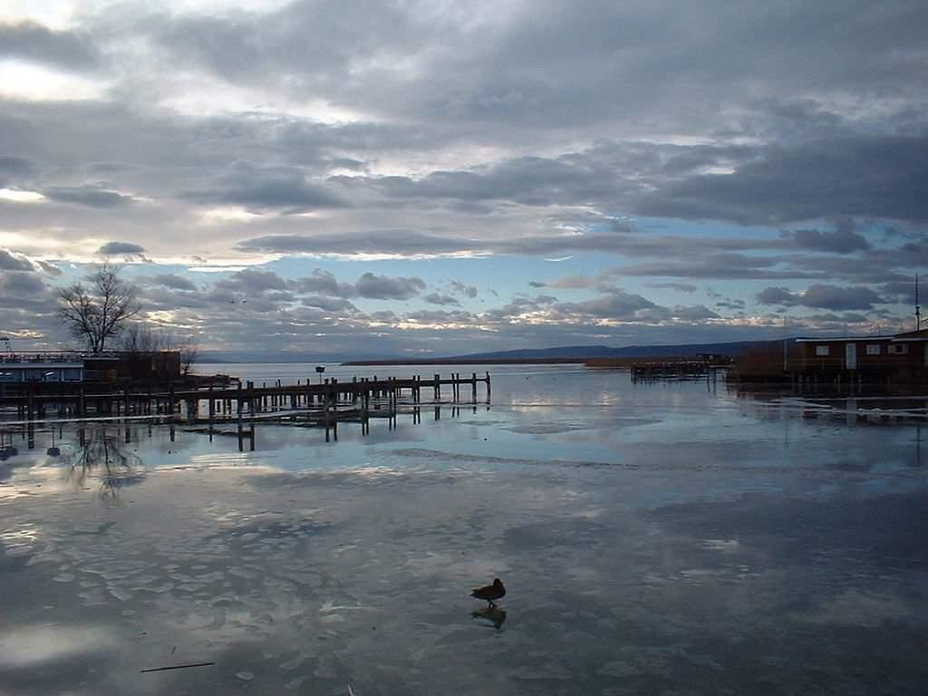 Lake Fertő Hungary