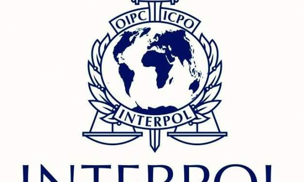 First Hungarian to be elected to Interpol Executive Committee