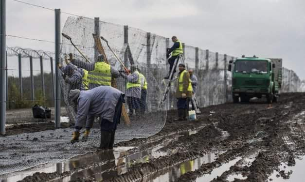 Weekly government press briefing: Secondary fence to be built along Hungary-Serbia border