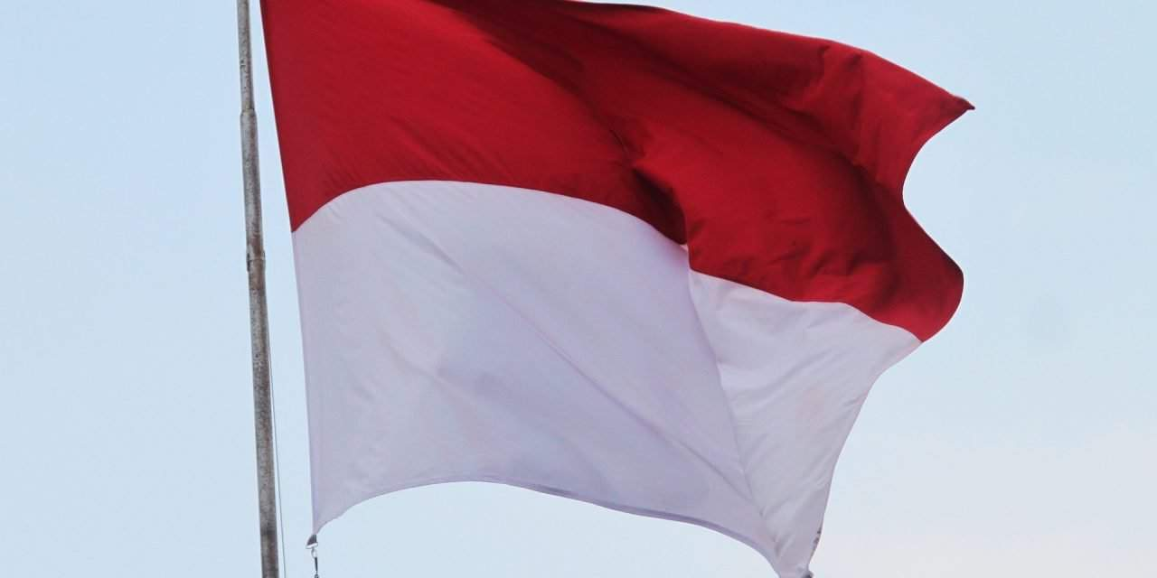 Hungary-Indonesia ties in focus at talks between foreign affairs committee heads