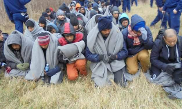 47 migrants captured in Ásotthalom on Friday night